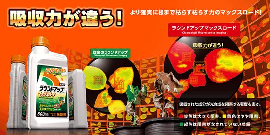 ラウンドアップは日本でも発売中の除草剤